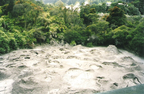 The Pohutu Geyser, Rotorua, New Zealand - Mud pool
