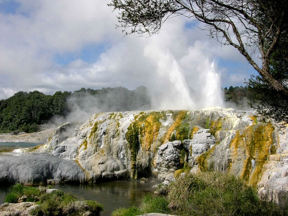 The Pohutu Geyser, Rotorua, New Zealand - Wonder of nature
