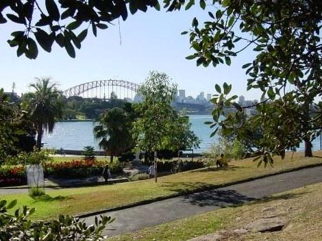 The Royal Botanic Gardens Sydney The Most Beautiful Botanical Gardens In The World