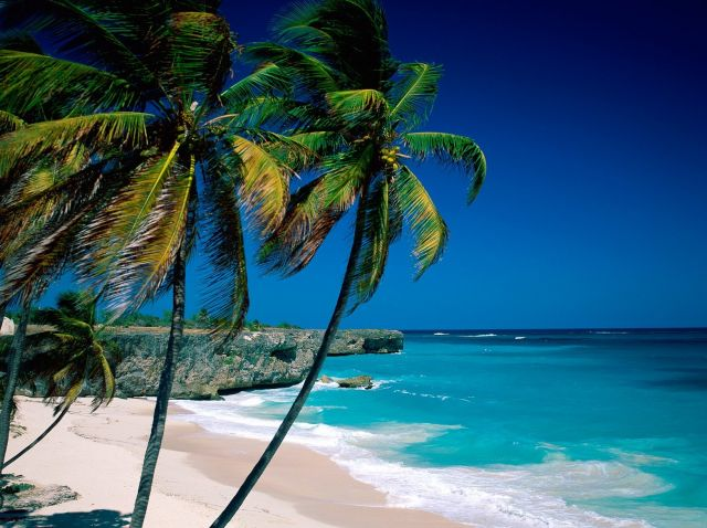 Images The Caribbean Sea Barbados 14303