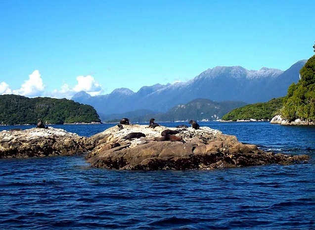 Fiordland  National Park - Fascinating place