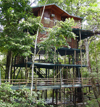 Ariau Amazon Towers Hotel, Brazil - Comfortable hotel in the Jungle