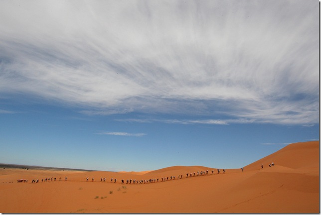 The Sahara Desert, North Africa - Beautiful landscape