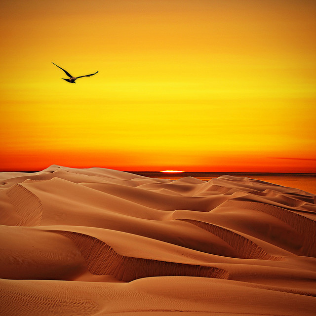 Images The Rub Al Khali Desert Beautiful landscape 14743