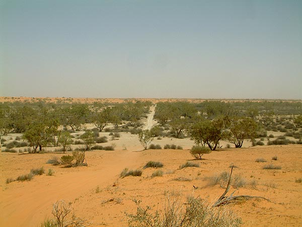 The Kalahari Desert, Africa - The Largest Deserts in the World