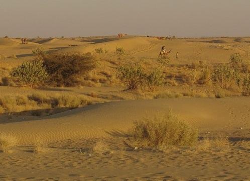 The Thar Desert - The Largest Deserts in the World