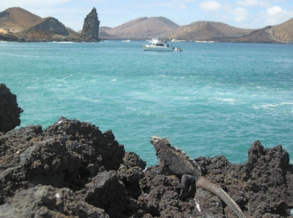 The Galapagos Islands - Marvelous place