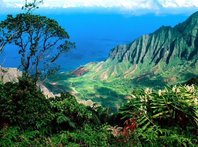 The Hawaii Island - Diverse landscape