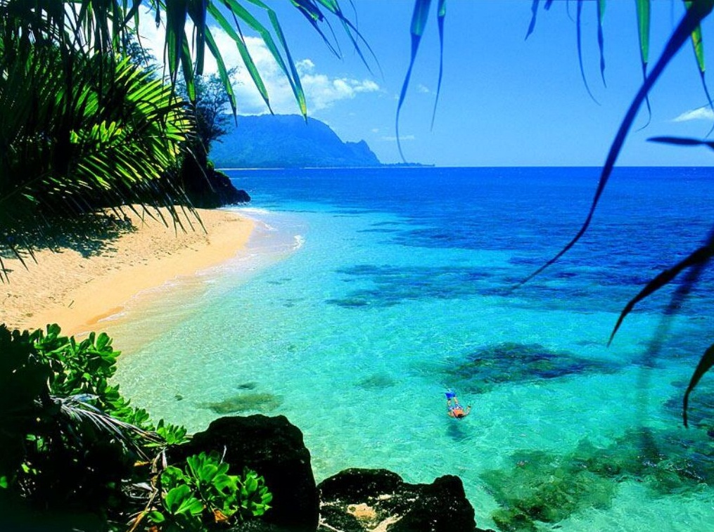 The Hawaii Island - Exotic Island