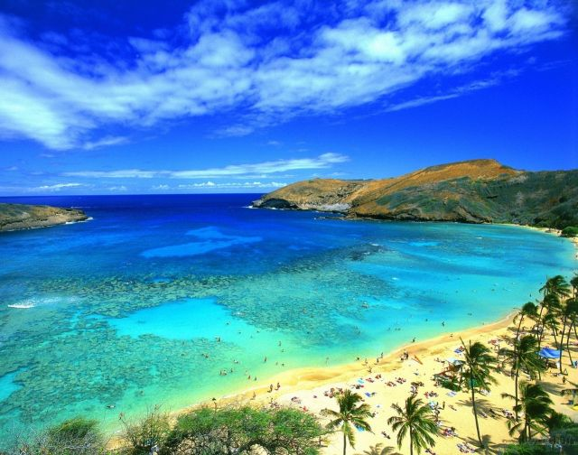 The Hawaii Island - Light tropical beach