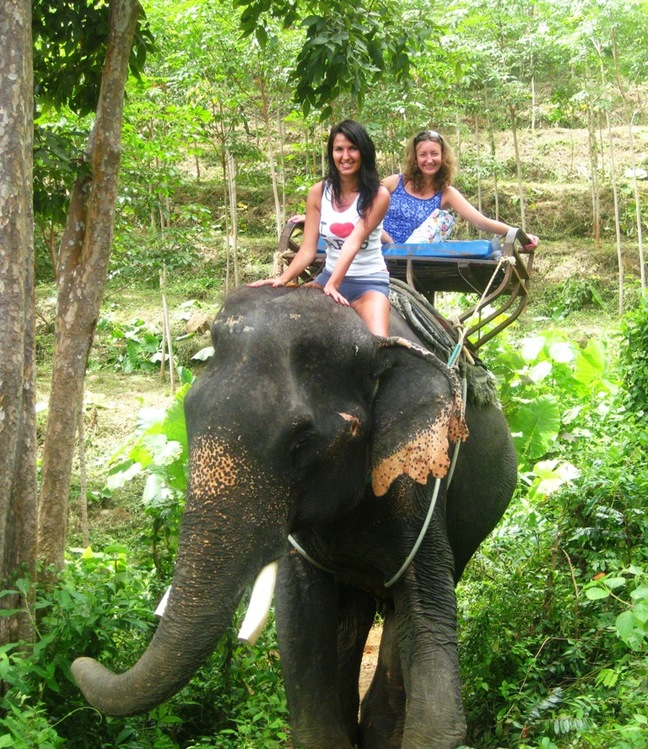 Elephant trekking - The symbol of Thailand