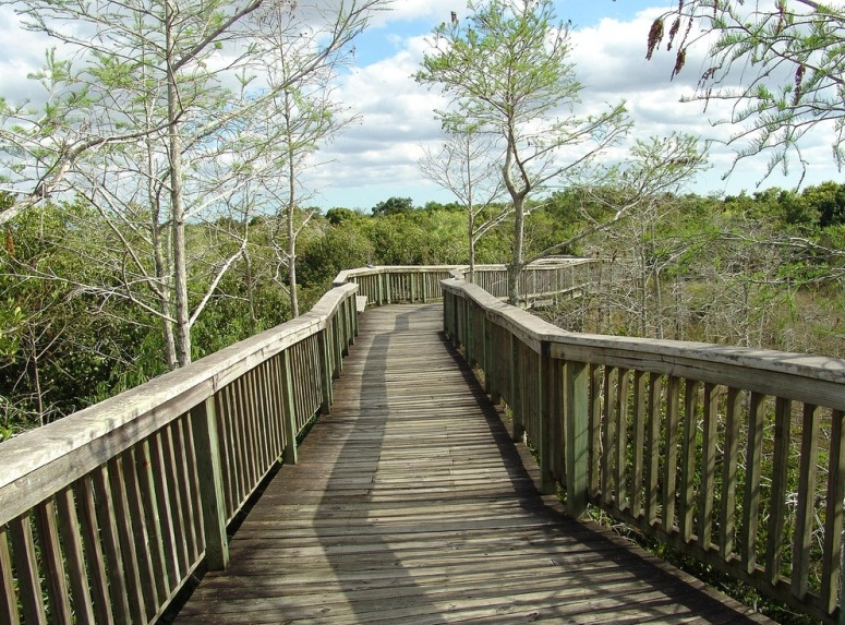 Everglades National Park  - Bridge