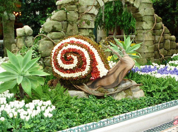 Bellagio Conservatory and Botanical Garden - Amazing destination