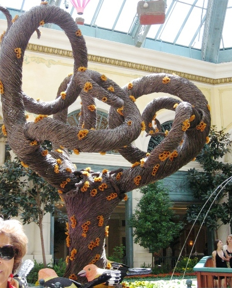 Bellagio Conservatory and Botanical Garden - Twisted tree