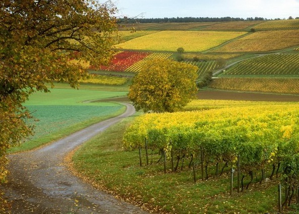 France - Countryside view