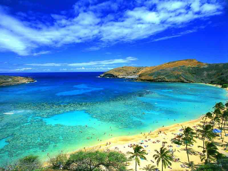 The United States of America  - Breathtaking and relaxing Oahu in Hawaii