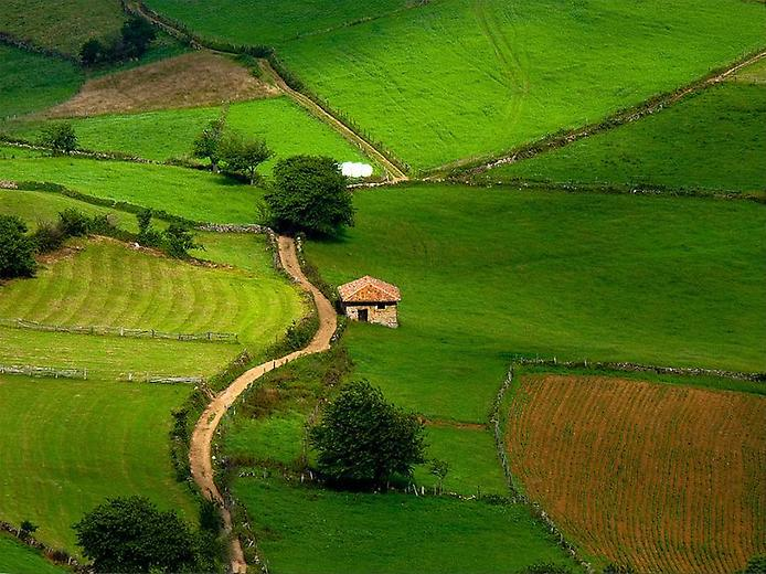 Spain - Countryside life