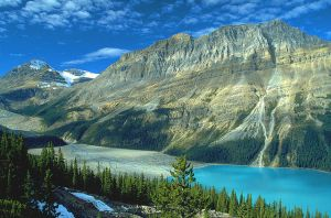 Peyto Lake in Canada