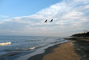 Caspian Sea in Russia