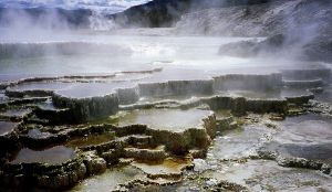Yellowstone National Park in USA