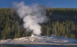 The Old Faithful Geyser, Yellowstone Park