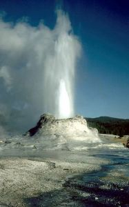 The Castle Geyser, Yellowstone National Park