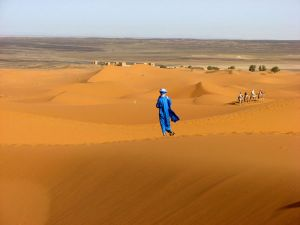 Images The Largest Deserts In The World Best Pictures The - What is the largest desert in the world