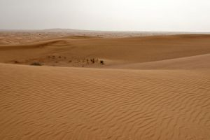 The Arabian Desert