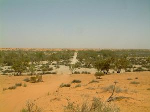 The Kalahari Desert, Africa