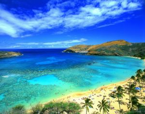 The Hawaii Island