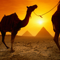 Image Egypt  - The best winter holiday destinations