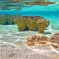 Image Shark Bay - The most unusual holiday destinations in the world