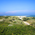 Image Skagens Gren - The best places to visit in Denmark