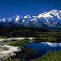 Image Denali National Park, Alaska - The best places to watch wildlife