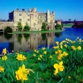 Image Leeds Castle in UK - Top castles to visit in Europe
