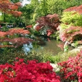 Image Exbury Gardens in UK