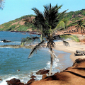 Image Beaches of Goa - The best places to visit in India
