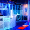 Image Ice Bar in London - The most bizarre clubs in the world