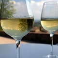 Image San Gimignano Wine Tour - The best wine tour itineraries in Tuscany