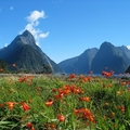 Image New Zealand - The best adventure destinations in the world