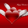 Image Valentine's Day - The most important events of the year