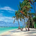 Image Barbados in Caribbean - Top places to visit in the world before you die