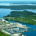 Image Kodiak - The best places to visit in Alaska, USA