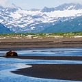 Image Katmai National Park and Preserve - The best places to visit in Alaska, USA