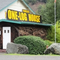 The One Log House