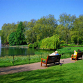 Image St. James's Park - The best places to visit in London, United Kingdom