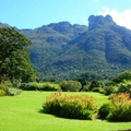 Image Kirstenbosch Botanical Garden - The Most Beautiful Botanical Gardens in the World