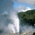 Prince of Wales Feathers Geyser, New Zealand