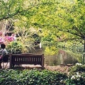 Image Descanso Gardens - The Most Beautiful Botanical Gardens in the World