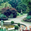 The Royal Botanic Gardens Sydney